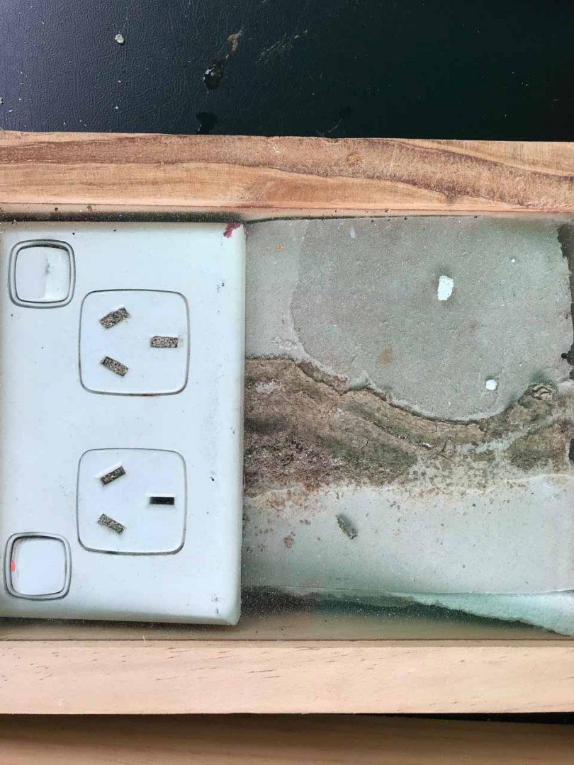 Power Point Termites